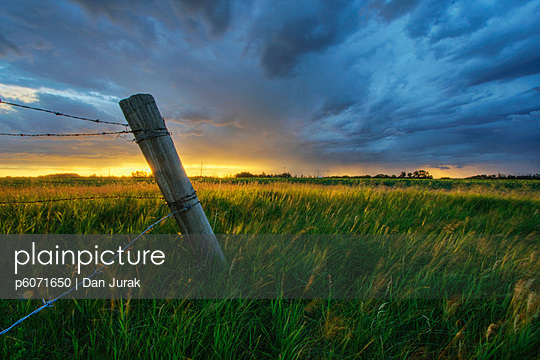 Summer thunderstorm and fencepost on a wheat farm north of Edmonton, Alberta.