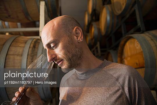 Vintner smelling red wine in winery barrel room