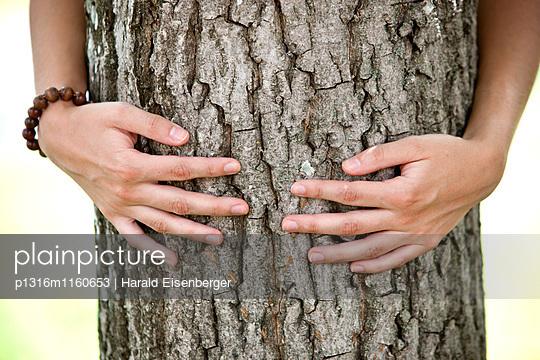 Frau umarmt einen Baum, Steiermark, Österreich - p1316m1160653 von Harald Eisenberger