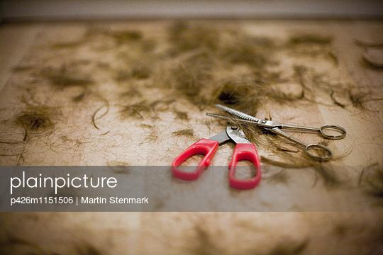 p426m1151506 von Martin Stenmark
