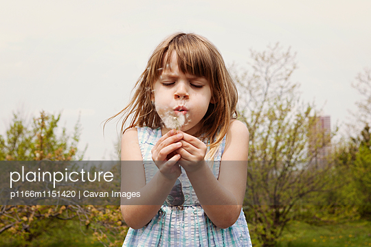 p1166m1151420 von Cavan Images