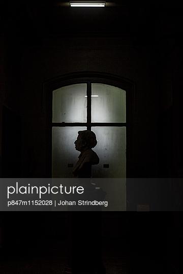 p847m1152028 von Johan Strindberg