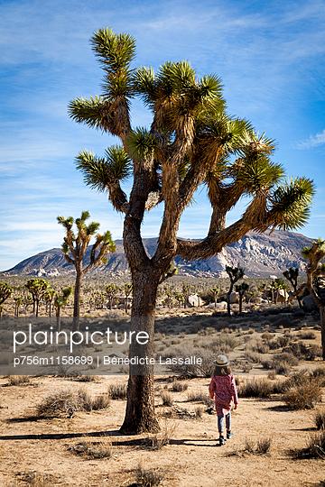 Palm Springs - p756m1158699 von Bénédicte Lassalle