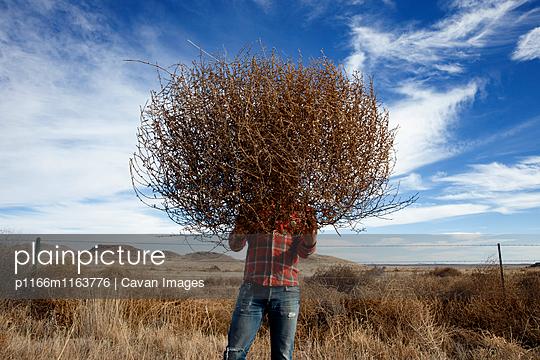 p1166m1163776 von Cavan Images