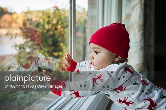p1166m1151168 von Cavan Images