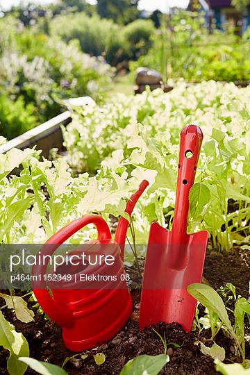 Gartenwelt - p464m1152349 von Elektrons 08