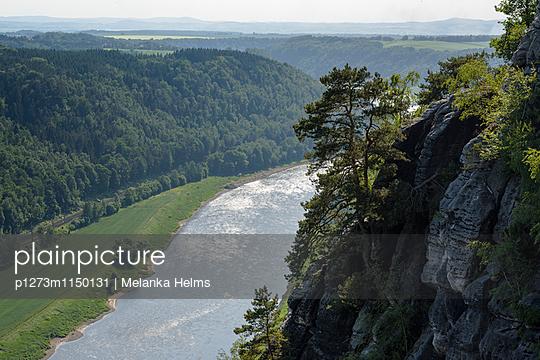 Blick auf die Elbe, Sächsische Schweiz, Bad Schandau, Brandenburg - p1273m1150131 von melanka