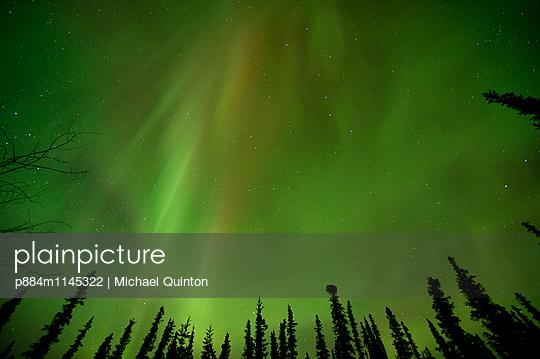 p884m1145322 von Michael Quinton