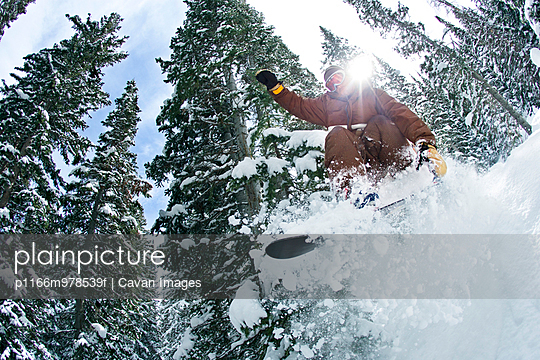 Man Snowboarding Through Pine Trees