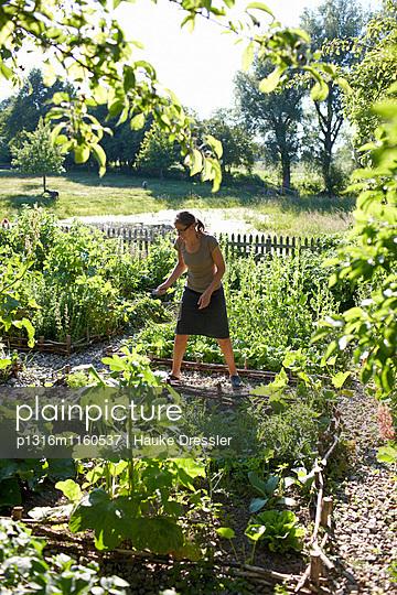 Frau bei der Gartenarbeit, Haus Strauss, Bauernkate in Klein Thurow, Roggendorf, Mecklenburg-Vorpommern, Deutschland - p1316m1160537 von Hauke Dressler