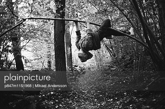 p847m1151968 von Mikael Andersson
