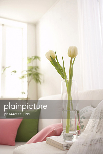 White tulips in a vase next to a sofa
