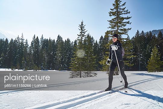 Skilangläuferin unterwegs - p851m1159266 von Lohfink