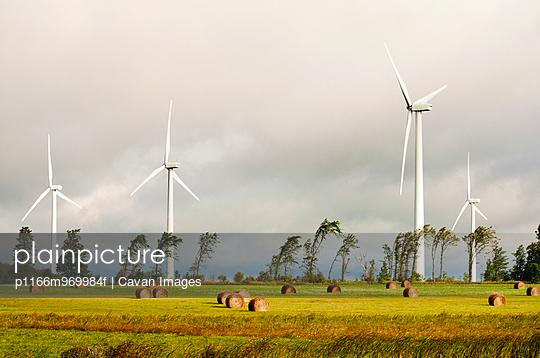 Wind Turbines in hay field