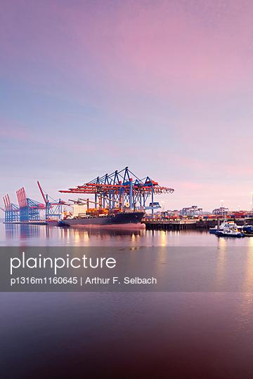 Container Schiffe im Waltershofer Hafen, Burchardkai im Morgenlicht, Hafen Hamburg, Hamburg, Deutschland - p1316m1160645 von Arthur F. Selbach