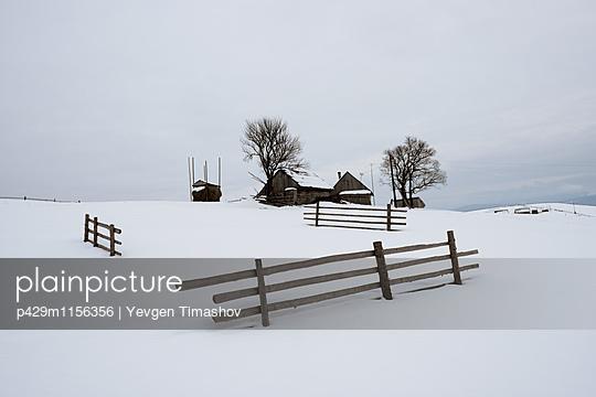 p429m1156356 von Yevgen Timashov