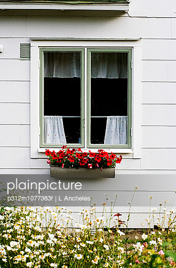 A flower pot outside a window Sweden.
