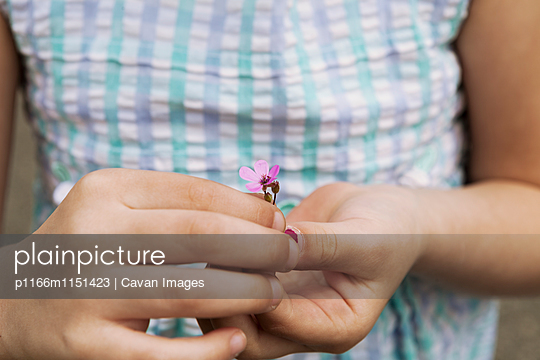 p1166m1151423 von Cavan Images