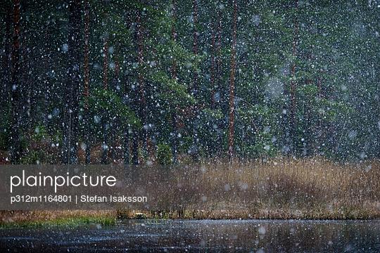 p312m1164801 von Stefan Isaksson