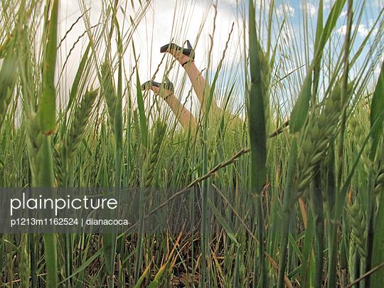 Schaufensterpuppe kopfüber im Kornfeld - p1213m1162524 von dianacoca