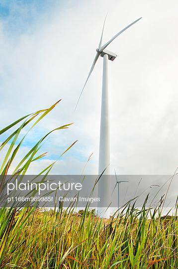 Winf Turbine in field