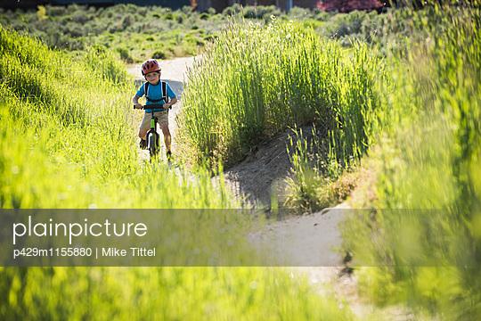 p429m1155880 von Mike Tittel