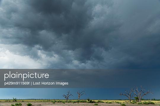 Storm clouds over landscape, Kasane, Chobe National Park, Botswana, Africa