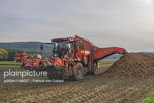 p300m1166037 von Patrice von Collani