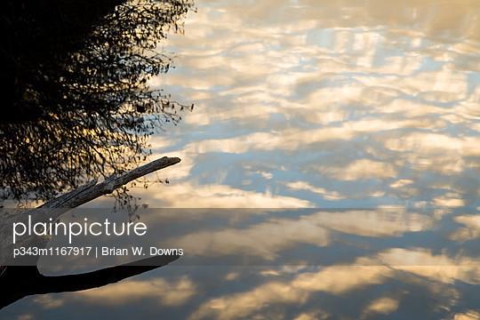 p343m1167917 von Brian W. Downs