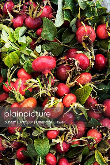 Full frame shot of radishes