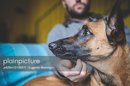 Mature man stroking pet dog