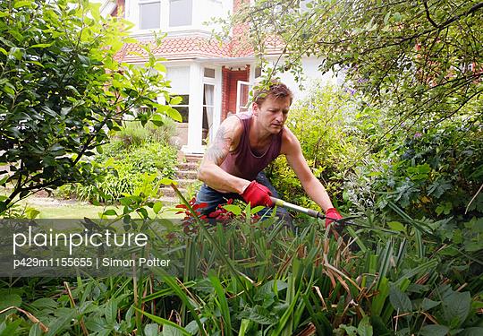 p429m1155655 von Simon Potter
