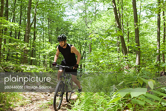 Male cyclist in forest