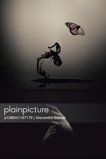 p1080m1167179 von Alexandra Stanek