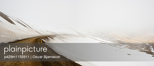p429m1155911 von Oscar Bjarnason