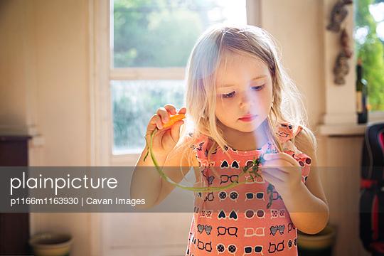 p1166m1163930 von Cavan Images