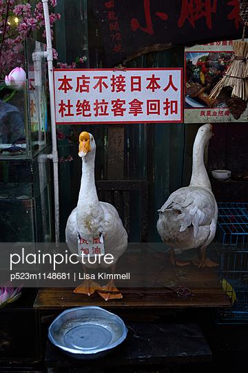 Hunan - p523m1148681 von Lisa Kimmell