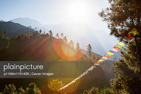 p1166m1151438 von Cavan Images
