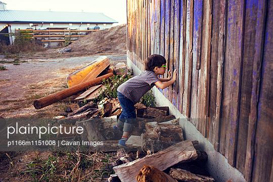p1166m1151008 von Cavan Images