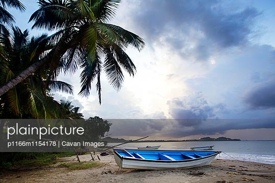 p1166m1154178 von Cavan Images