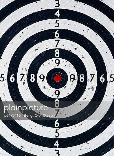 Bull^S Eye Target