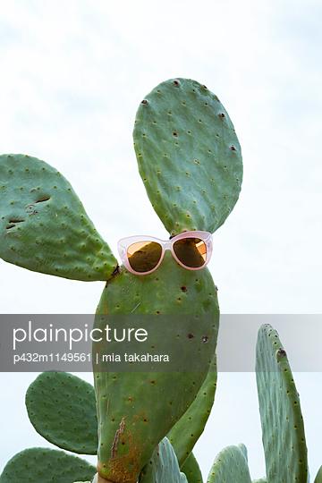 Sonnenbrille auf Kaktus - p432m1149561 von mia takahara