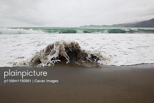 p1166m1150561 von Cavan Images