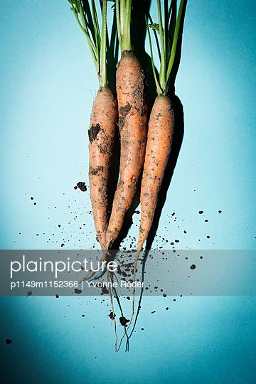 Karotten - p1149m1152366 von Yvonne Röder