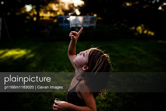 p1166m1183020 von Cavan Images