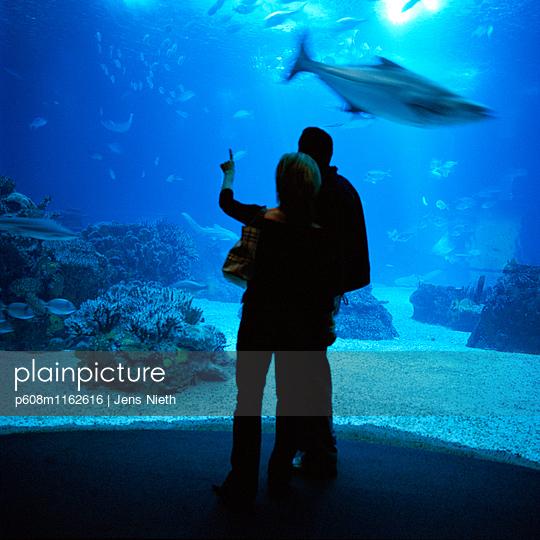 Aquarium - p608m1162616 von Jens Nieth