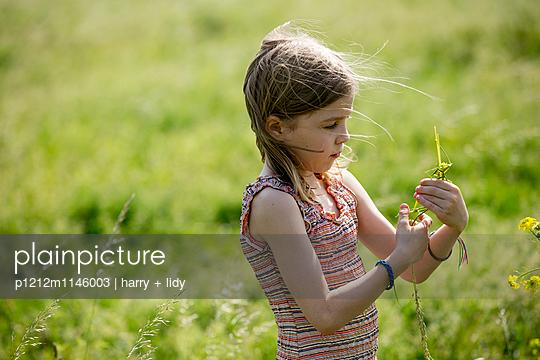 Mädchen in der Wiese bastelt mit Grashalmen und Wildblumen - p1212m1146003 von harry + lidy