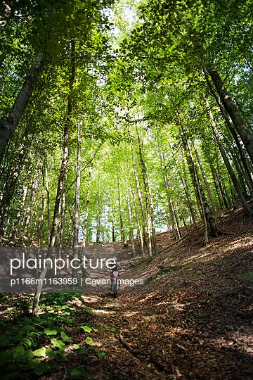 p1166m1163959 von Cavan Images