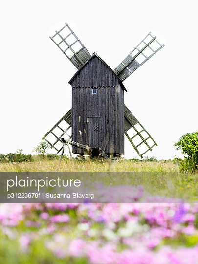 Windmill with purple flowers in the foreground