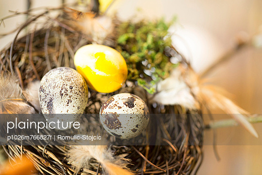 Easter Eggs In Nest, Osijek, Croatia, Europe